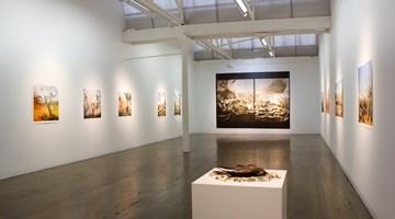 Contemporary art exhibition, Anne Zahalka, Wild Life, Australia at Arc One Gallery, Melbourne