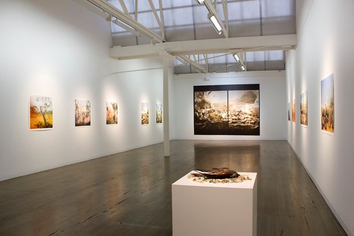 Exhibition view: Anne Zahalka, Wild Life, Australia,Arc One Gallery, Melbourne (16 April–18 May 2019). Courtesy Arc One Gallery, Melbourne.