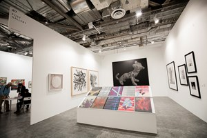 Fost Gallery at Art Stage Singapore 2015 Photo: © Dawn Chua & Ocula