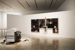 Helen Marten, 'Parrot Problems', 2014. Installation view of the 20th Biennale of Sydney (2016) at the MCA, Sydney. Courtesy the artist and Sadie Coles HQ, London. Collection of K11 Kollection, Hong Kong. Photographer: Ben Symons.