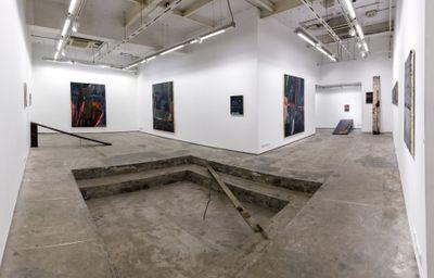 Exhibition view: Biraaj Dodiya, Stone is a Forehead, Experimenter, Hindustan Road (6 March–30 June 2020).