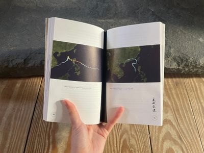 Tiffany Sia, Too Salty Too Wet 更咸更濕 (Speculative Place Press, 2021).
