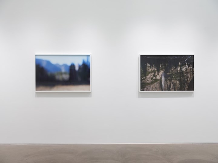 Exhibition view: Catherine Opie, So long as they are wild, Lehmann Maupin, Hong Kong (17 May–7 July 2018). Courtesy the artist and Lehmann Maupin. Photo: Kitmin Lee.