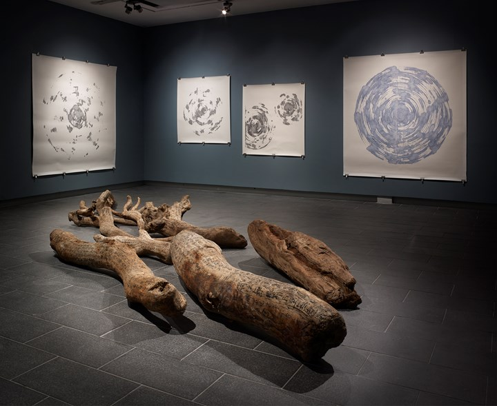Exhibition view: Charwei Tsai, Bulaubulau, Centre for Chinese Contemporary Art, Manchester (12 October 2018–20 January 2019). Courtesy the artist and CFCCA. Photo: Michael Pollard.