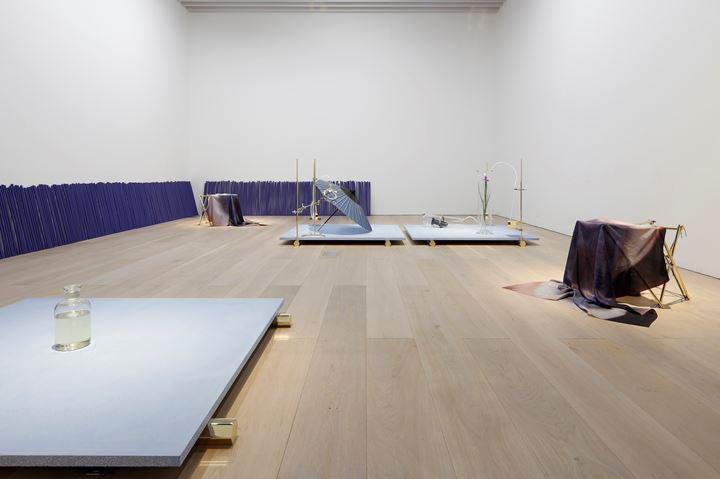 Exhibition view: Dane Mitchell, Iris, Iris, Iris, Mori Art Museum in Tokyo (18 November 2017–1 April 2018). Courtesy the artist and Mossman, Wellington.