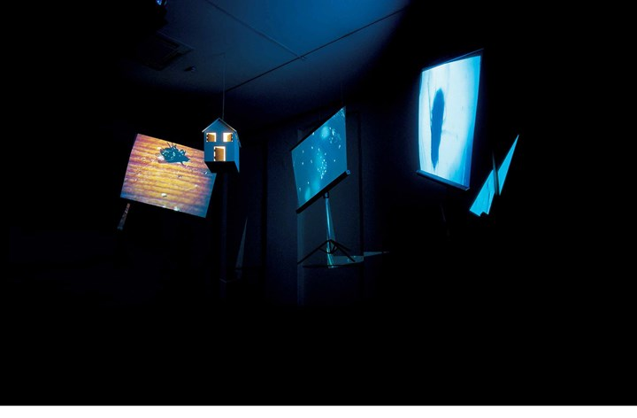 Antonio Dias, The Illustration of Art: A fly in my movie (1975). Digital media, wood and light. Dimensions variable. Courtesy Galeria Nara Roesler.