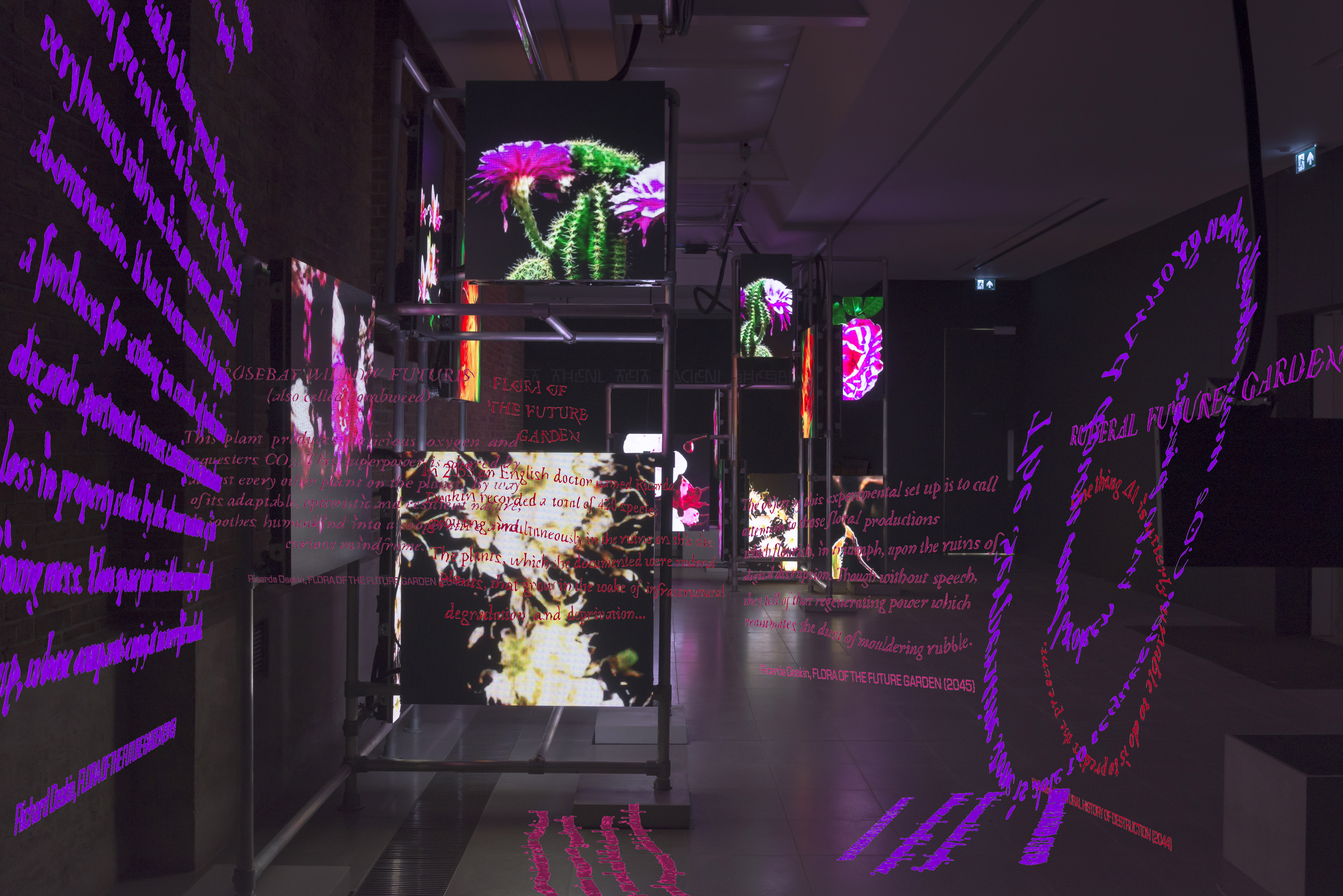 A dark room with chunk of pink and purple texts floating around alongside screens showing stills of plants, as a part of artist Hito Steyerls's exhibition at the Serpentine Galleries in London