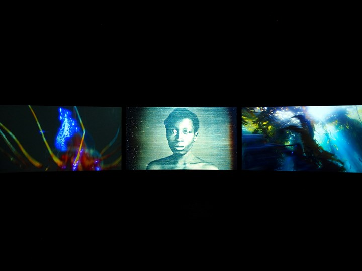 John Akomfrah, Vertigo Sea (2015). Three-channel HD video installation, 7.1 sound, colour. 48 min 30 sec. © Smoking Dogs Films. Courtesy Lisson Gallery.