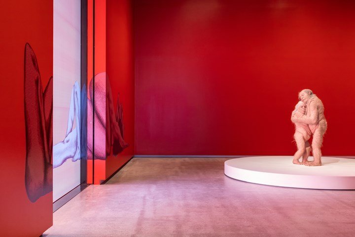 Exhibition view: Patricia Piccinini & Joy Hester: Through Love ..., TarraWarra Museum of Art (25 November 2018–11 March 2019). Photo: Rick Liston.