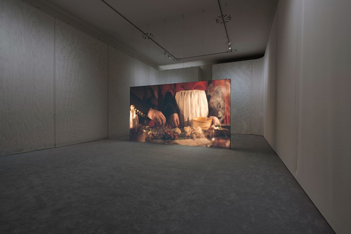 Rachel Rose, Wil-o-Wisp (2018). Video installation with sound, double-lined mesh scrim, carpet, projection screen, and semi-transparent projection scrims. Exhibition view: Rachel Rose: Wil-o-Wisp/The Future Fields Commission, the Philadelphia Museum of Art, Pensyllvania (2 May–16 September 2018). Jointly commissioned and owned by the Philadelphia Museum of Art and Fondazione Sandretto Re Rebaudengo. Funding is made possible for the Philadelphia Museum of Art through the Contemporary Art Revolving Fund. Image © 2018 Rachel Rose. Courtesy Philadelphia Museum of Art, 2018. Photo: Tim Tiebout.