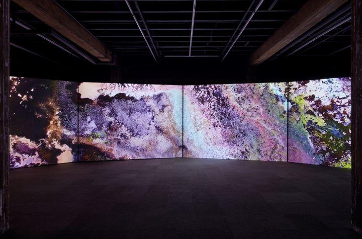 Exhibition view: Taloi Havini, Reclamation, Artspace, Sydney (17 January–23 February 2020). Courtesy Artspace. Photo: Zan Wimberly.