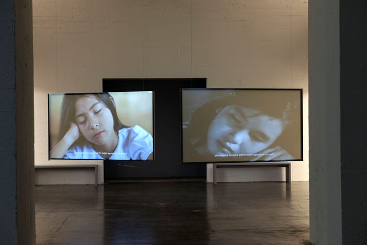 Thao Nguyen Phan, Tropical Siesta (2017). Exhibition view: Monsoon Melody, WIELS, Brussels (1 February–26 April 2020). Courtesy WIELS.