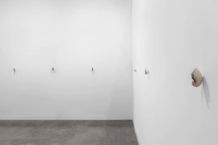 Zac Langdon-Pole, 'Passport (Argonauta)' (2018). Exhibition view: Discoveries sector, Art Basel Hong Kong, Michael Lett Gallery (29–31 March 2018). Courtesy the artist, Michael Lett Gallery, and STATION Gallery. Photo: Sebastiano Pellion di Persano.