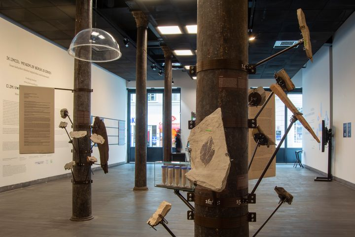 A gallery space features a series of poles from which fossils project into the space.