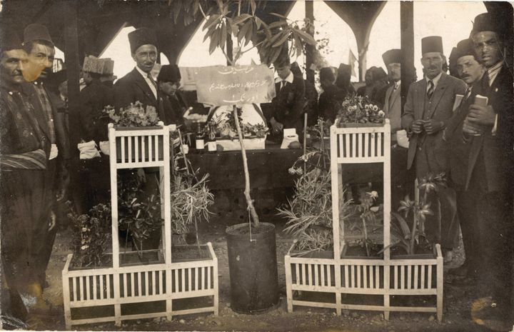 An archival photograph features a group of men at the Adana Agricultural Fair. They are surrounding a group of saplings.