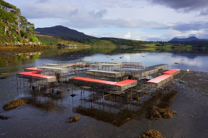 An installation of metal cage-like structures that form a matrix of seating is situated along the shores of a location in the Isle of Skye in Scotland, during low tide.
