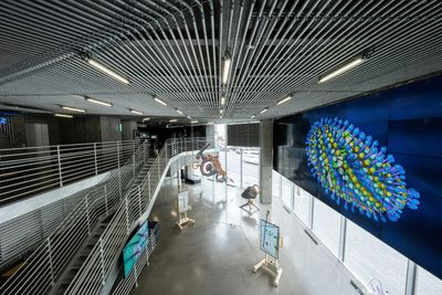 Exhibition view: World on a Wire, Hyundai Motorstudio, Seoul (7 May–8 August 2021).