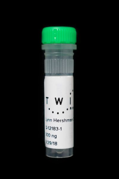 A vial of Lynn Hershman Leeson's DNA is captured against a black background.