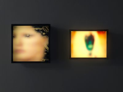 Two ligh tboxes hung on a grey wall in the exhibition space feature blurred imagery, one suggesting the face of a figure.