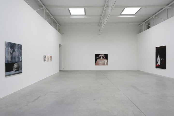 A white gallery space features a series of large-scale paintings by Mircea Suciu in the gallery space, including a grey painting featuring a skull, and a white rooster hanging upside down against a black background.