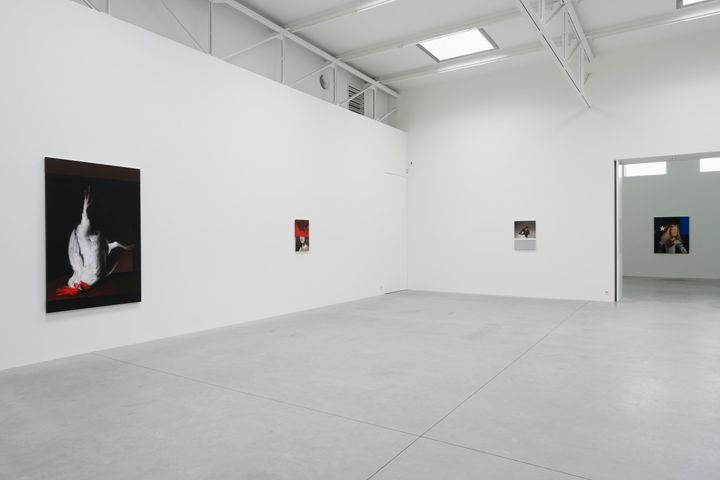 A white gallery space features a series of paintings by Mircea Suciu on the wall, the largest of which features a large white rooster hanging upside down against a black background.