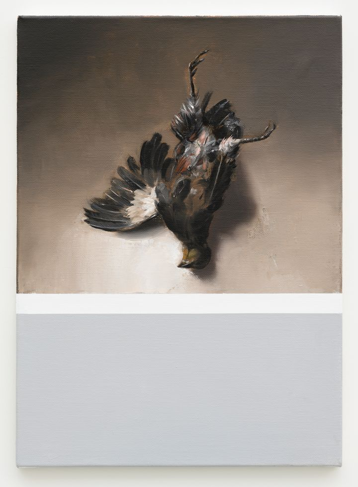 A vertical canvas has been divided in two, grey beneath while the top half is beige and features a dead bird lying on its back.