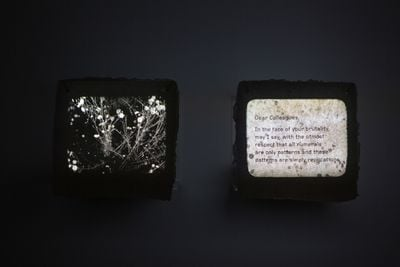Amar Kanwar, Letter 7 (2017). Exhibition view: Amar Kanwar: Such a Morning, Ishara Art Foundation, Dubai (20 January–30 May 2020).