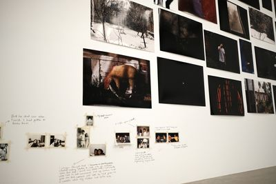 Dark photographs are assembled on the wall and photographed from below, at an angle. A sheep is visible in one of the images.