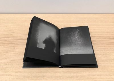 Katrin Koenning and Sarker Protick, Astres Noirs, published by Chose Commune in the exhibition Growing Like A Tree: Static In The Air, curated by Sohrab Hura at Ishara Art Foundation, Dubai (11 September–9 December 2021).