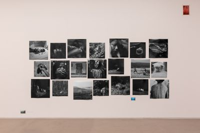 A series of black and white photographs are assembled in a cluster on the white exhibition wall. Images include two figures embracing, a sandy back, and a young boy lying upon a bed with flowers strewn across him.
