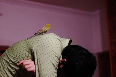 A photograph by Zainab captures a male figure leaning over in a room with purple walls. A budgie is sitting atop his curved back. His head is not visible.