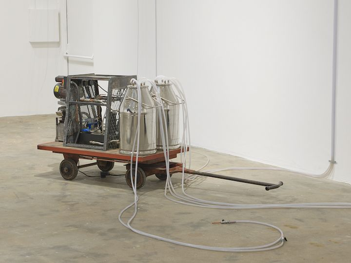 A machine sits in the gallery space, made up of two milk canisters with tubes running out of them. These sit atop a trolley, and combine with a machine at the back.