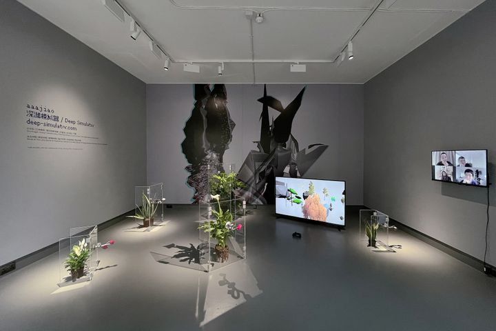 A grey room in the exhibition Deep Simulator by aaajiao shows plants on the floor encased in plexiglass, and a screen on the wall that appears to show a group video chat in motion.