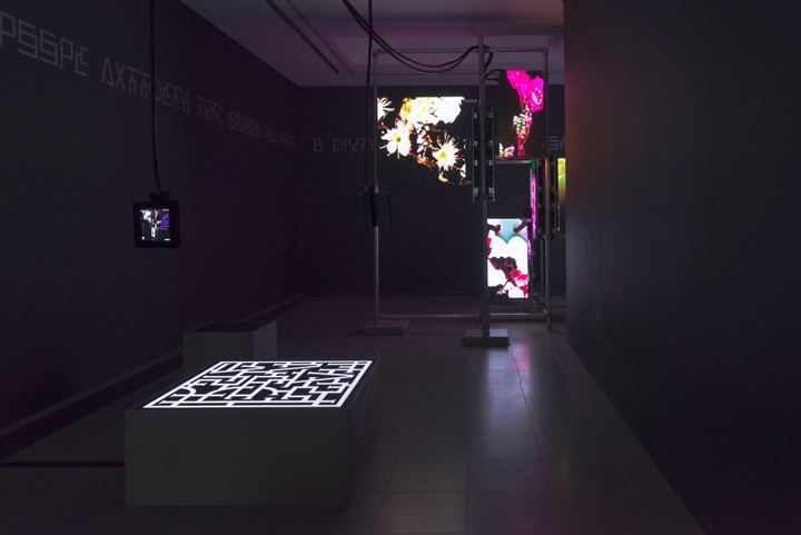 Exhibition view: Hito Steyerl, Power Plants, Serpentine Galleries, London (11 April – 6 May 2019). AR application design by Ayham Ghraowi, Developed by Ivaylo Getov, Luxloop. Courtesy the artist, Andrew Kreps Gallery, New York; Esther Schipper, Berlin. Photo: © 2019 readsreads.info.
