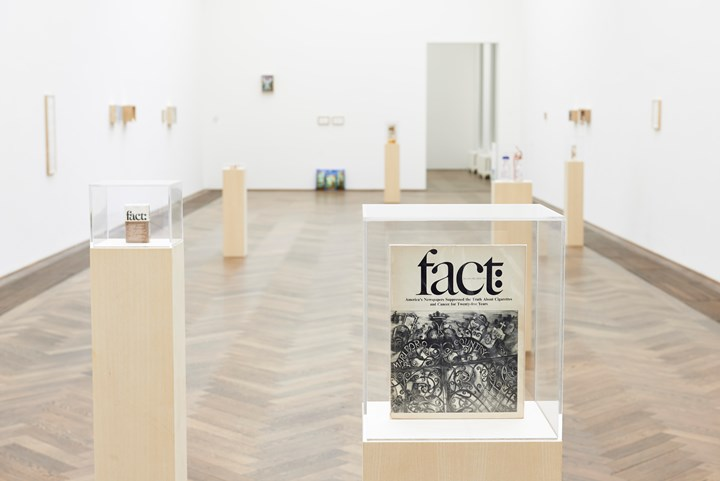 Maryam Jafri, Product Recall: An Index of Innovation. Fact (2014–2015). Framed texts, photographs, objects. Courtesy the artist and Laveronica arte contemporanea.
