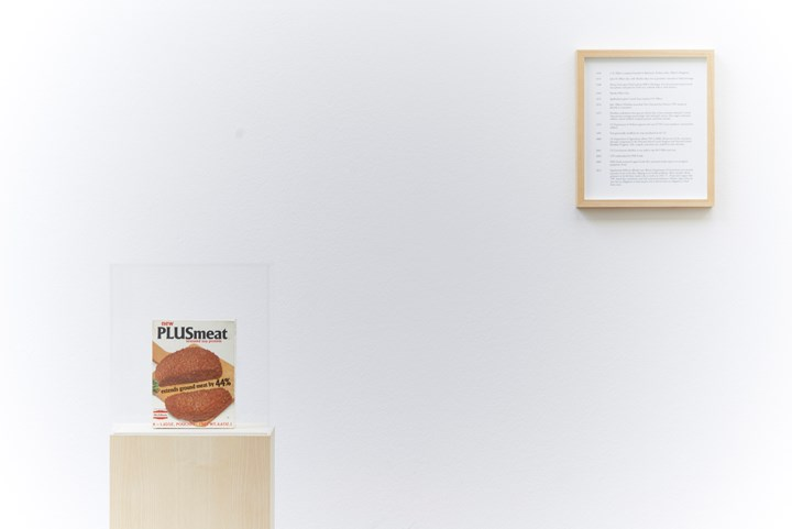 Maryam Jafri, Product Recall: An Index of Innovation. Plus Meat (2014–2015). Framed texts, photographs, objects. Courtesy the artist and Laveronica arte contemporanea.