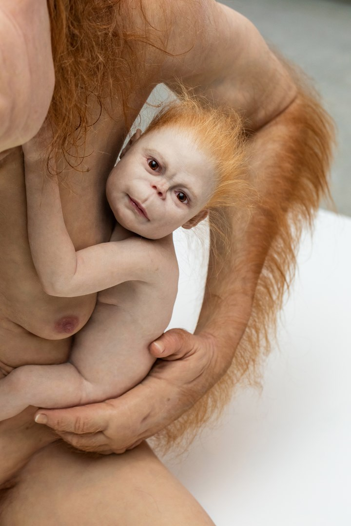 Patricia Piccinini, Kindred (detail) (2002). Exhibition view: Patricia Piccinini & Joy Hester: Through love ..., TarraWarra Museum of Art (25 November 2018–11 March 2019). The Michael and Janet Buxton Collection, Melbourne. Courtesy the artist, Tolarno Galleries, Melbourne, and Roslyn Oxley9 Gallery, Sydney. Photo: Rick Liston.