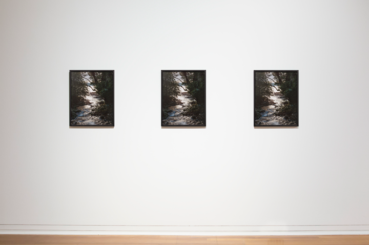 Zac Langdon-Pole, otherness of the Self (2015–2016); Spirit / is Life / it flows thru / the death of me / endlessly / like a river / unafraid / of becoming / the sea (2015–2016); The Torture Garden (2015–2016) (left to right). Exhibition view: Grammars, Dunedin Public Art Gallery, Dunedin (3 September–3 November 2016). Courtesy the artist, Michael Lett Gallery, and STATION Gallery. Photo: Max Bellamy.