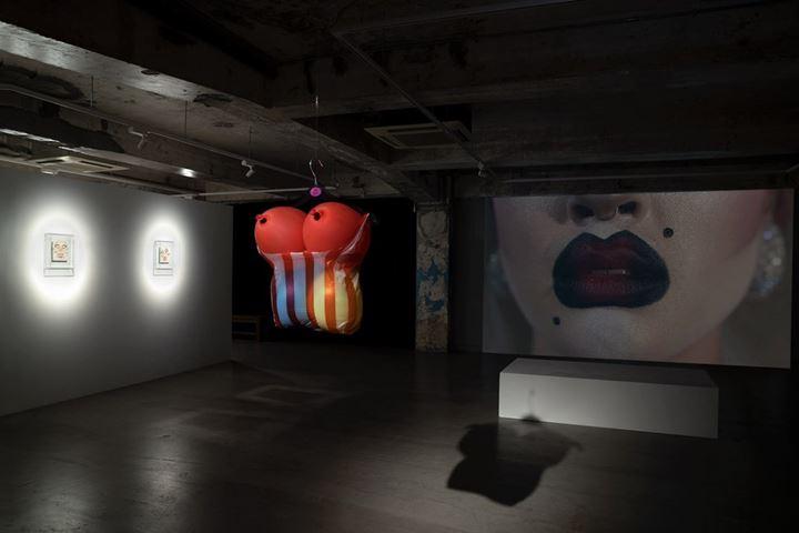 Exhibition view: Holy Mosses, Blindspot Gallery, Hong Kong (19 November 2019–11 January 2020). Courtesy Blindspot Gallery.