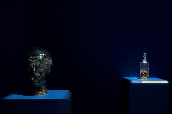 Ho Sin Tung, Same Old Sweet (2019). Exhibition view:  Swampland 沼澤地, Hanart TZ Gallery, Hong Kong (9 January–29 February 2020). Courtesy Hanart TZ Gallery. Photo: South Ho Siu Nam.