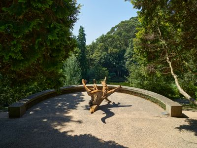 A corten steel tree fragment by Ai Weiwei sits in a little cove of a lush green forest.