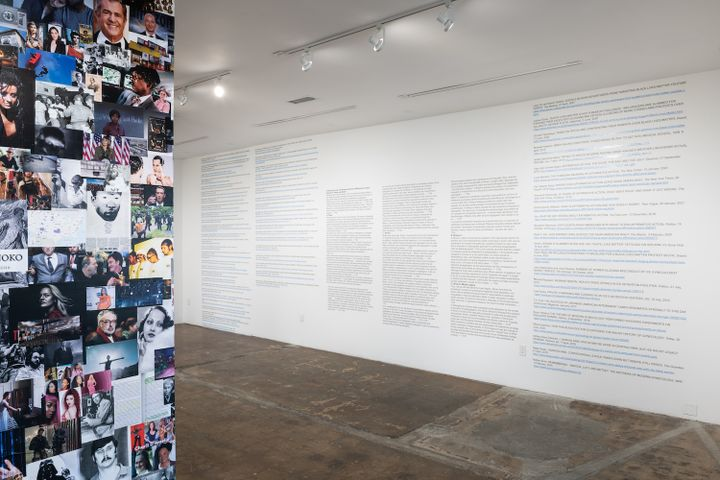 A series of pop cultural and historical images pertaining to racial politics are collaged on a wall. Part of it is visible to the left, and to the right a wall of text is visible.