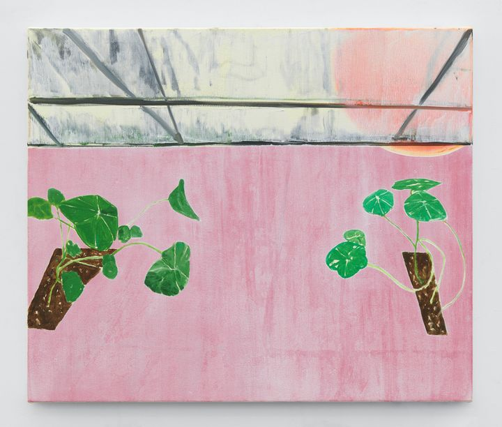 A painting by Dexter Dalwood depicts two thin flower beds, each with nasturtium rising from the soil. The flower beds are depicted above a pink background as though hovering.
