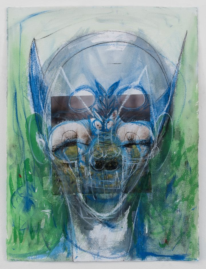 An alien-like figure brusquely outlined in shades of blue, green, and white features photographs of two rams as eyes.
