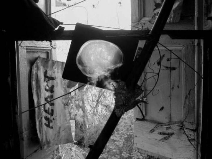 A black and white photography of an early installation by Manuel Mathieu with graffiti on the wall and an X-ray scan of a head, light from the window behind it shining through.