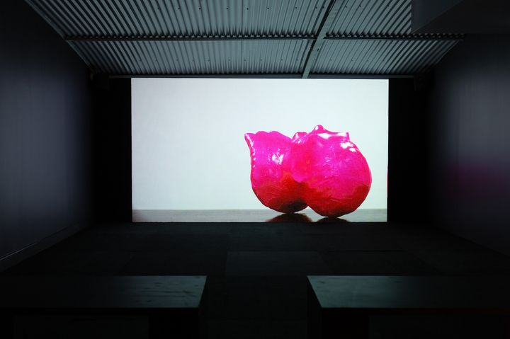 An amorphous pink shape bound in pink wrapping is captured on a screen, showing in a darkened gallery space.