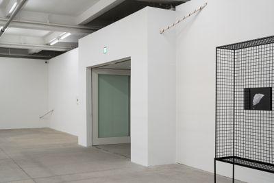 Exhibition view: My Body Holds Its Shape, Tai Kwun Contemporary, Hong Kong (25 May–20 September 2020).
