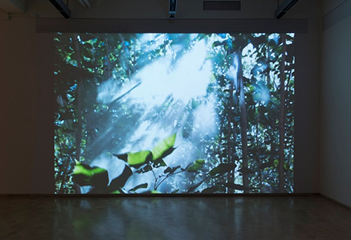 Exhibition view: Beatriz Santiago Muñoz, A Universe of Fragile Mirrors, El Museo del Barrio, New York City (11 January–30 April 2017). Courtesy El Museo del Barrio. Photo: Adam Reich.