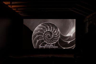 Lisa Rave, Europium (2014) (still). HD video, colour, sound. 18 min 40 sec. Exhibition view: I Taste the Future, Lofoten International Arts Festival 2017, Fredriksenbruket, Lofoten (1 September–1 October 2017). Photo: Kjell Ove Storvik/NNKS.