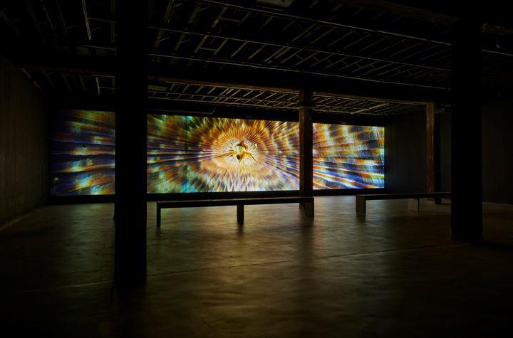 Exhibition view: Mel O'Callaghan, Centre of the Centre, Artspace, Sydney (22 August–27 October 2019). Courtesy the artist and Kronenberg Mais Wright, Sydney; Galerie Allen, Paris; Belo Galsterer, Lisbon. Photo: Zan Wimberley.